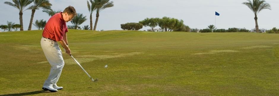 SwingPlane Golf Android App